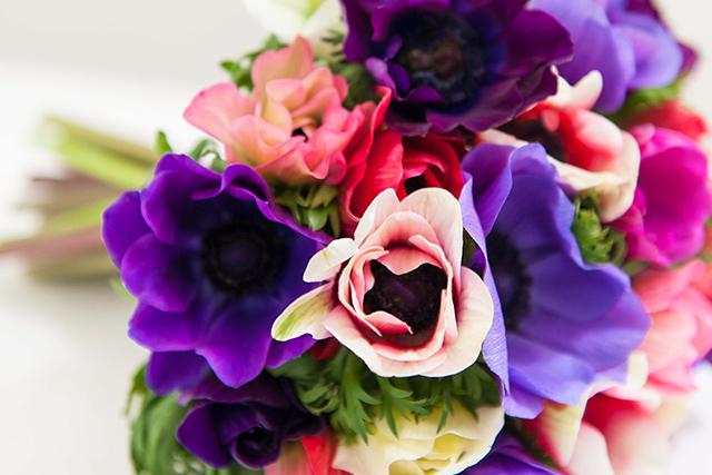 1〜3月の愛の花言葉を持つ花