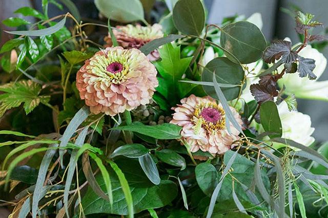 7〜9月の愛の花言葉を持つ花