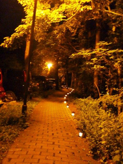 0815夜の散策道.JPG