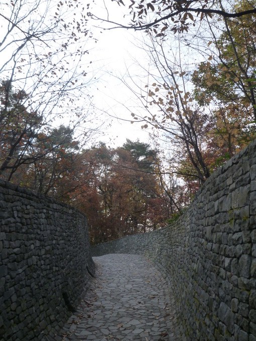 1031石入口の紅葉.JPG