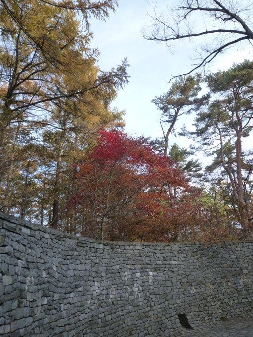 1031石畳の紅葉.JPG