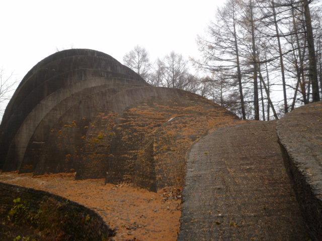 1119カラマツの葉に覆われた石.JPG