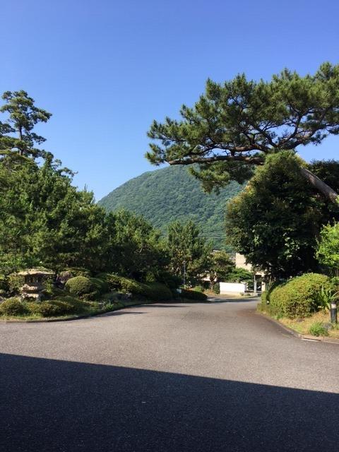 夏の空IMG_4270.JPG