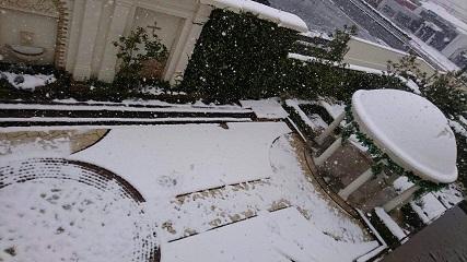 ブログ雪5.jpg
