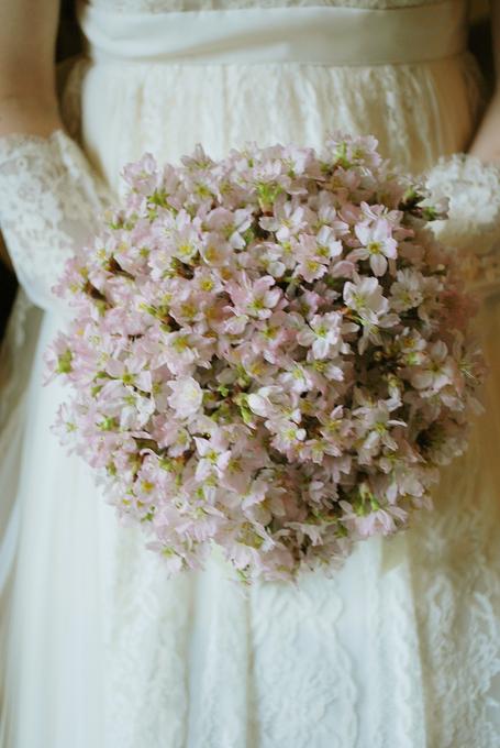 「桜 結婚式」の画像検索結果