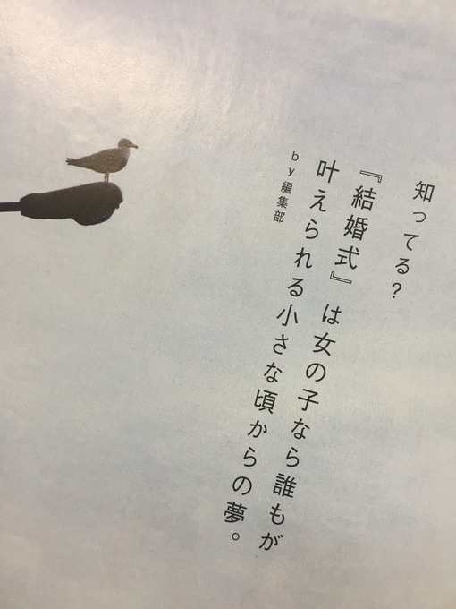 S__63676420.jpg