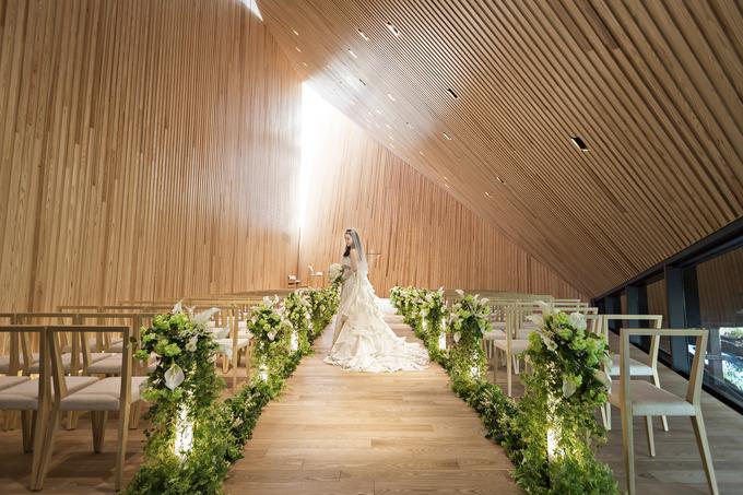 森の光教会写真.jpg