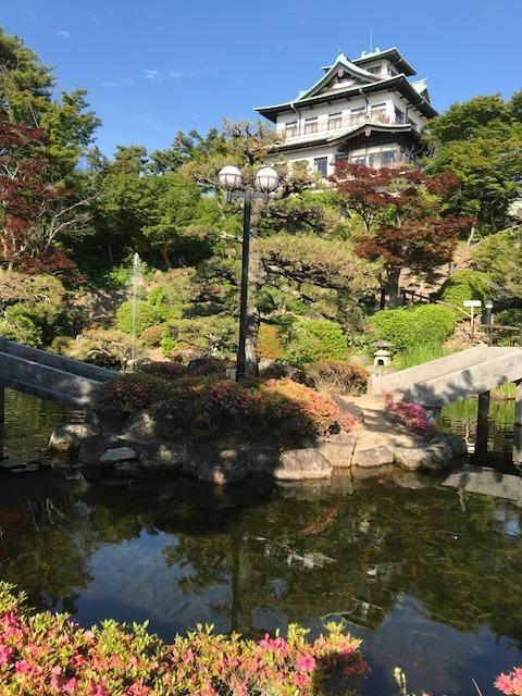 池からのホテル.jpg