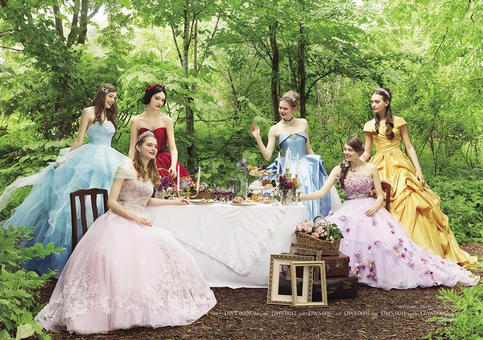 Disney_1st_Dress_image.jpg