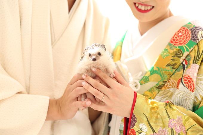 ペットと一緒の結婚式♪【福島県の結婚式場ララシャンスいわき】