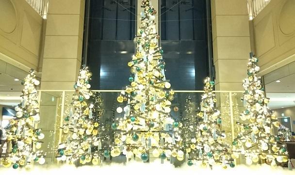 ロビー_クリスマスツリー.jpg