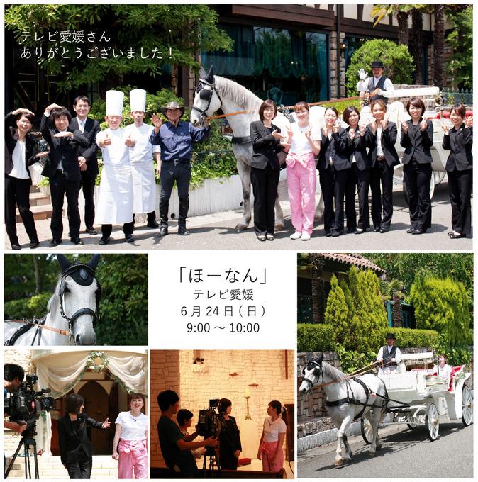 テレビ取材2.jpg