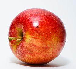 Red_Apple.jpg