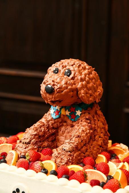 犬ケーキ (2).jpg
