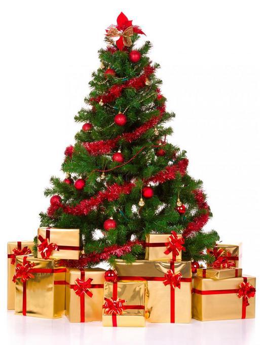 Xmas-Tree1.jpg
