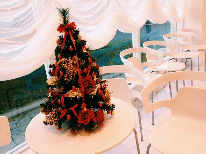 miniクリスマスツリー.JPG