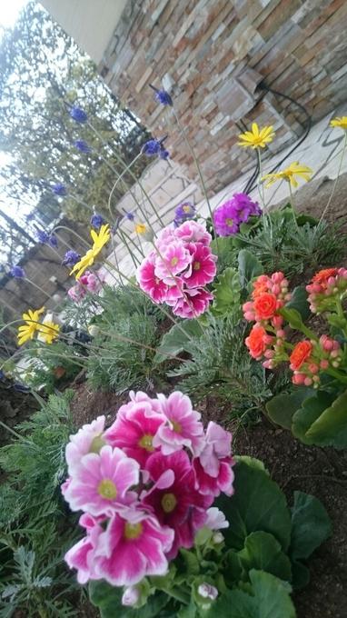 3花植え.JPG