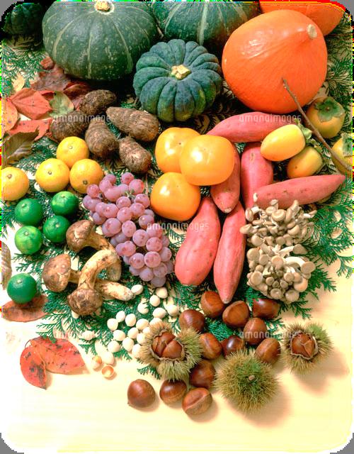 秋野菜.png