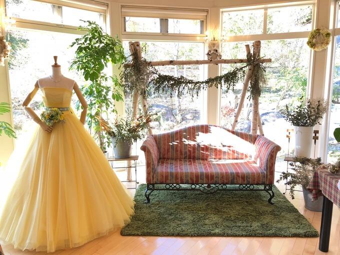 ブログ用ドレス黄色.jpeg