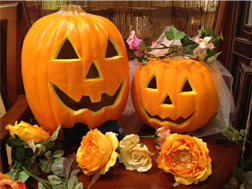 サロンかぼちゃ.jpg