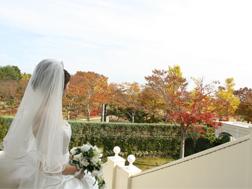 秋 公園.jpg