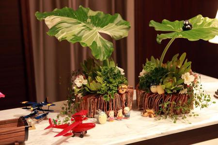 (5)受付台にもトトロ風の植物と、飛行機