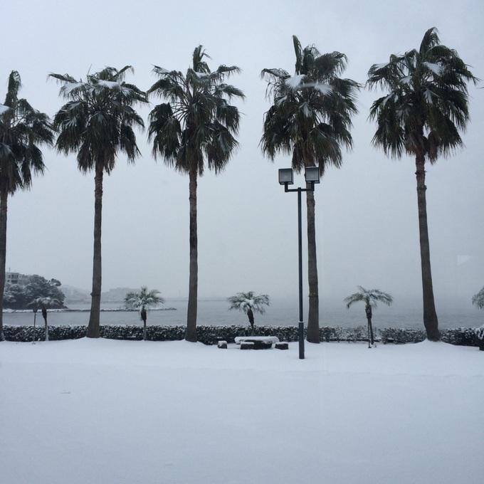 平川雪3.jpg