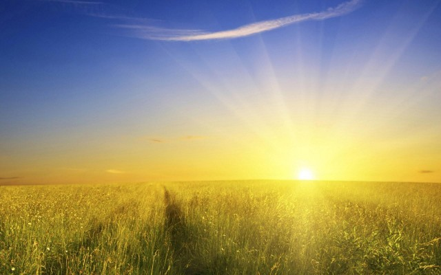 Green-Field-Sunshine-640x400.jpg