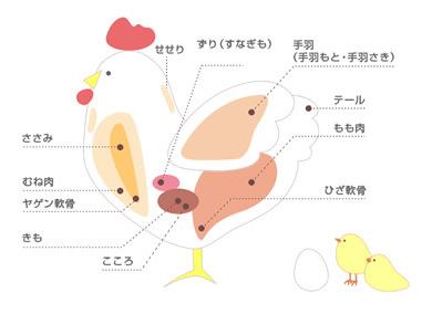 torihime_01.jpg