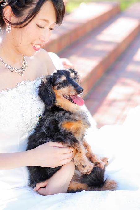 結婚式の前撮り・・・☆