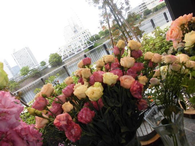 ピンク白花.JPG