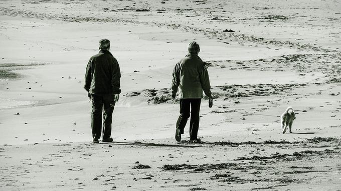 old-couple-1943890_960_720.jpg